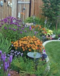 230 Best images about Gardening on Pinterest | Front yards ...