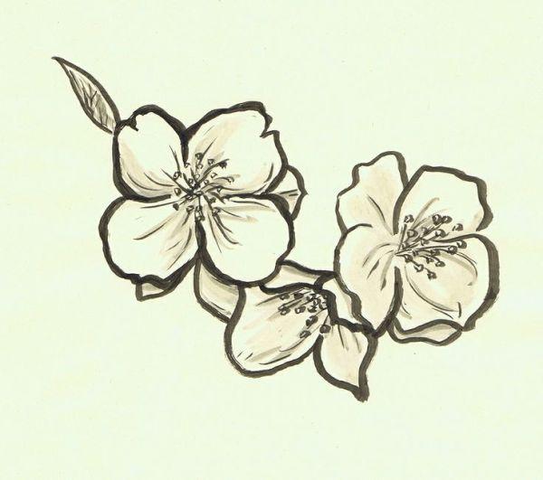 366f645763dda Jasmine Flower Tattoo Small   Best Flower Site