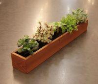 Extra-long window succulent planter | Indoor Gardening ...