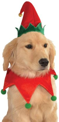 17 Best images about Christmas dogs on Pinterest | Cocker ...