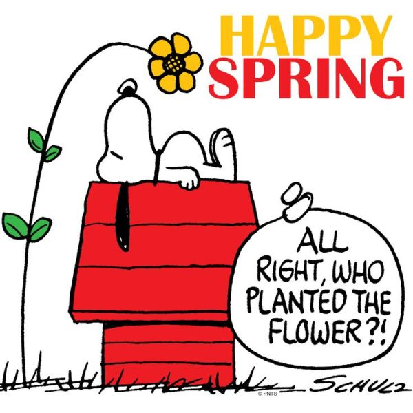 snoopy wishes happy spring