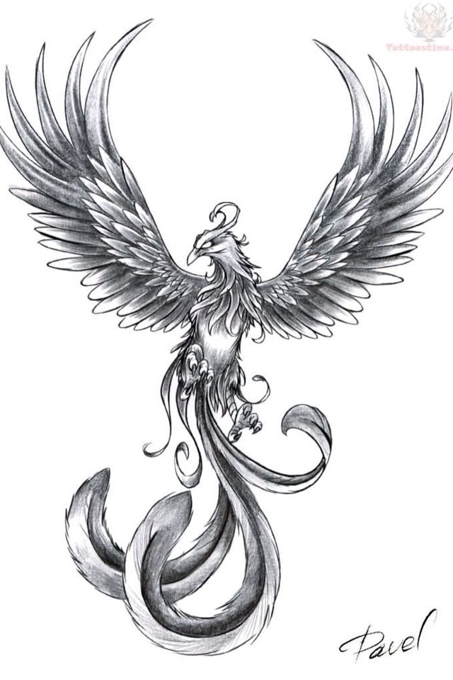 Phoenix a symbol of energy and rebirth  Tattoo ideas
