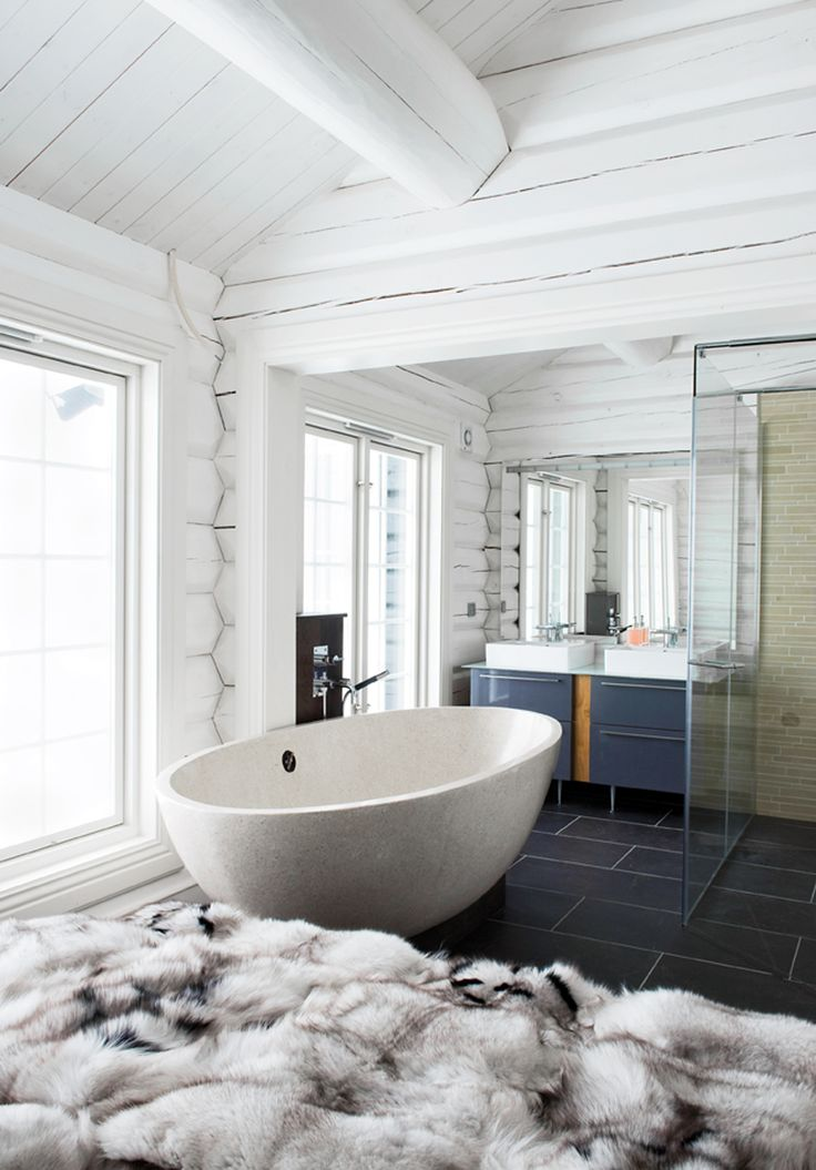 Gorgeous contemporary bathroom design within a rustic log
