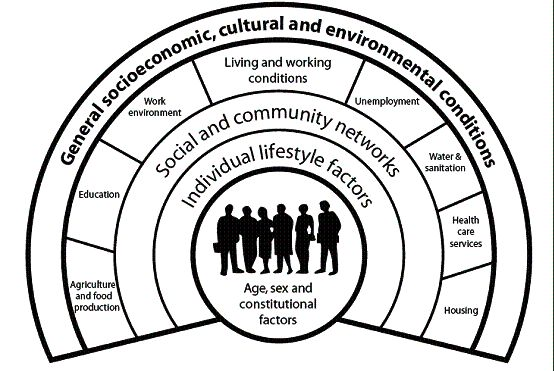 17 Best ideas about Social Determinants Of Health on