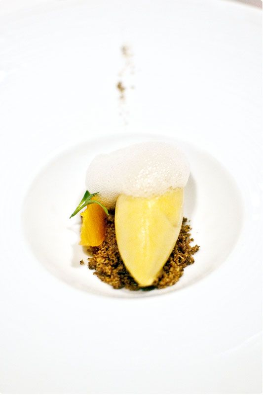 119 best images about Plated Desserts Modern on Pinterest  Fine dining Restaurants and Plating