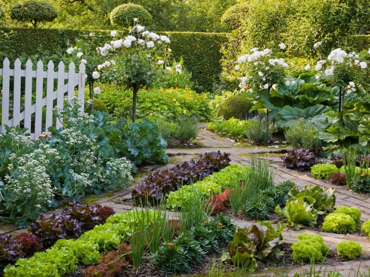 668 Best Images About Beautiful Vegetable Gardens On Pinterest
