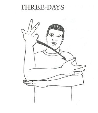 25+ best ideas about Words in sign language on Pinterest