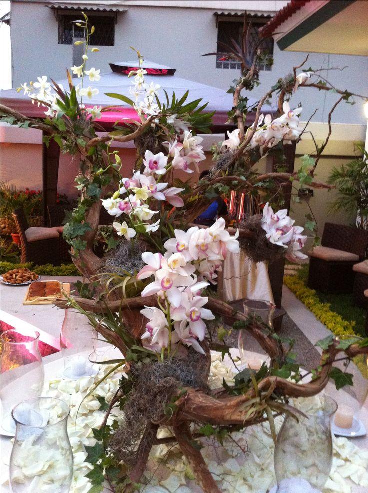 Hermoso tronco decorado con orqudeas  La magia de las Orqudeas  Pinterest