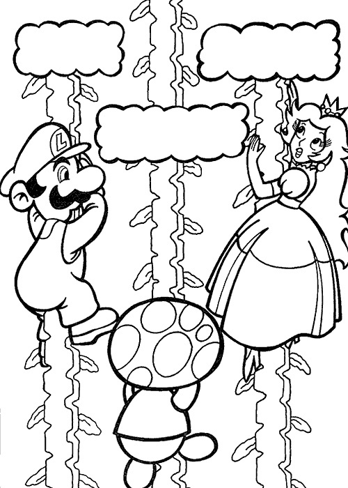 17 Best images about Mario Bros birthday party on