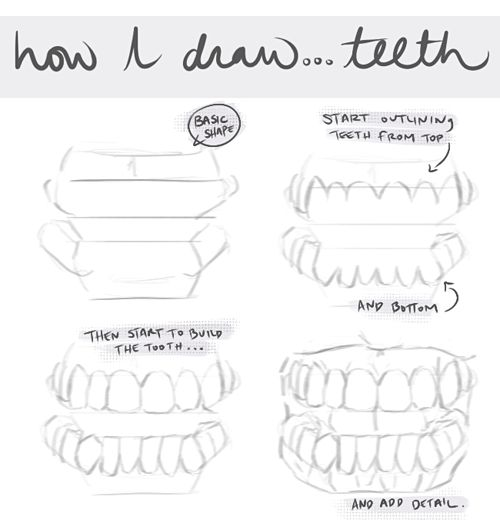 17 Best images about Draw Different Types of Teeth (fangs