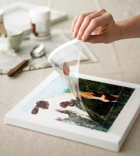How to transfer photos onto a canvas…so cool!