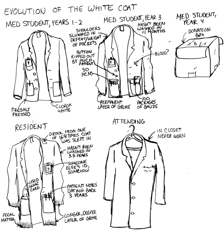 A Cartoon Guide to Becoming a Doctor: Evolution of the