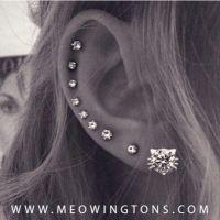 25+ Best Ideas about Multiple Ear Piercings on Pinterest