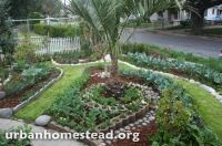 Urban Homestead.org-How to transform your yard into a ...