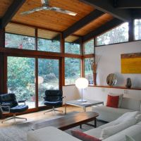 Vaulted Ceiling Midcentury Modern Design Ideas, Pictures ...
