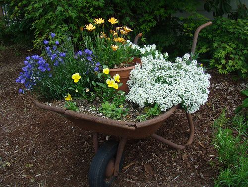 37 Best Images About ❤ Wheelbarrows On Pinterest Gardens