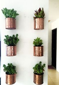 25+ best ideas about Wall Planters on Pinterest