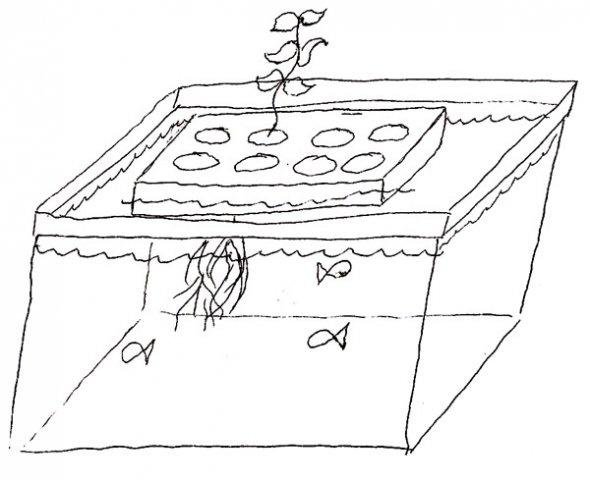 210 best aquaponics & hydroponics images on Pinterest