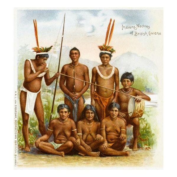 Native Indians of British Guyana South America Giclee