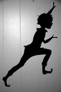 Peter Pan Shadow Wall Decal | www.imgkid.com - The Image ...