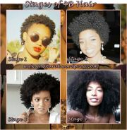 stages of 4b hair types #4b