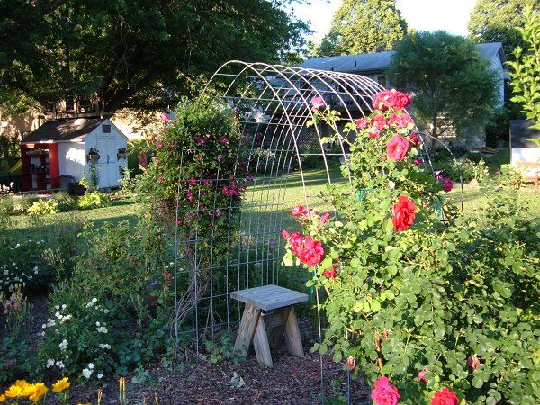 Hog Wire Arbor Quick And Easy To Make Gardening
