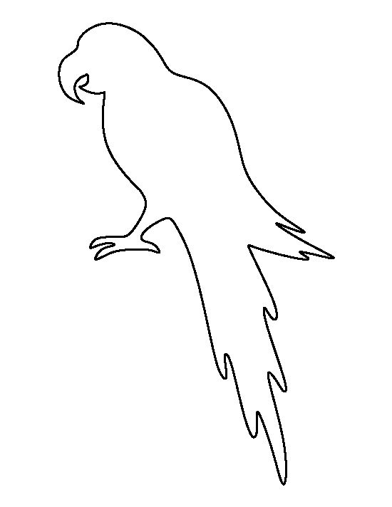 Parrot pattern. Use the printable outline for crafts