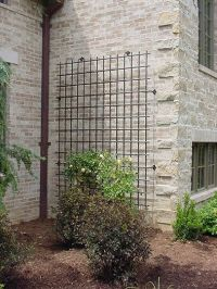 17 Best ideas about Metal Trellis on Pinterest | Wall ...