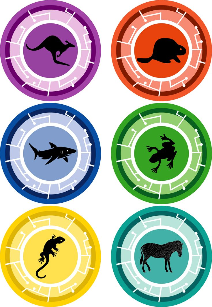 Lots Of Resolutions And Creature Facts Power Disks 1jpg