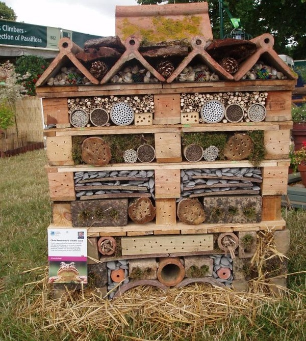The 101 Best Images About Insect Homes On Pinterest Gardens