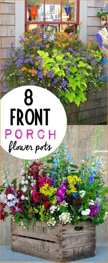 25 Best Ideas About Flowers Garden On Pinterest Flower