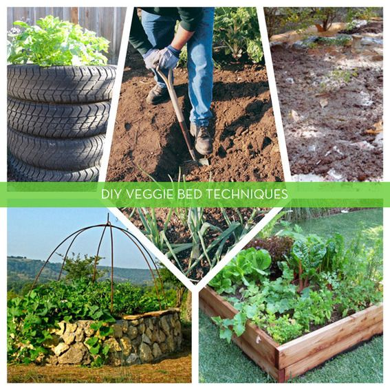 5 DIY Techniques For Creating Productive Vegetable