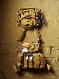 59 best images about Plate carrier setup ideas on ...