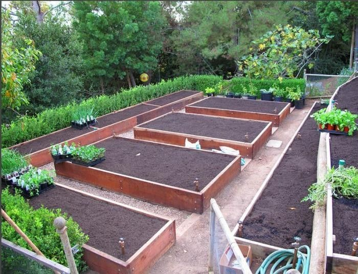 25 Best Ideas About Garden Layouts On Pinterest Flower Garden