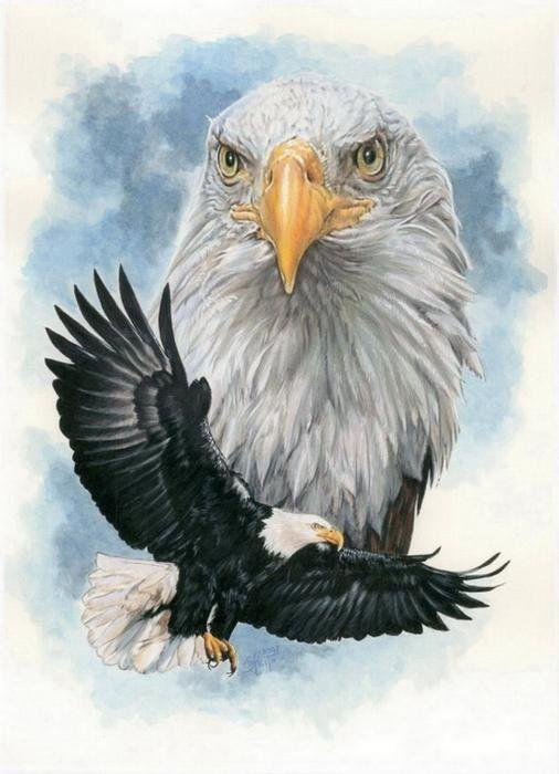 Peerless Poster  Cross stitch Bird and Animal