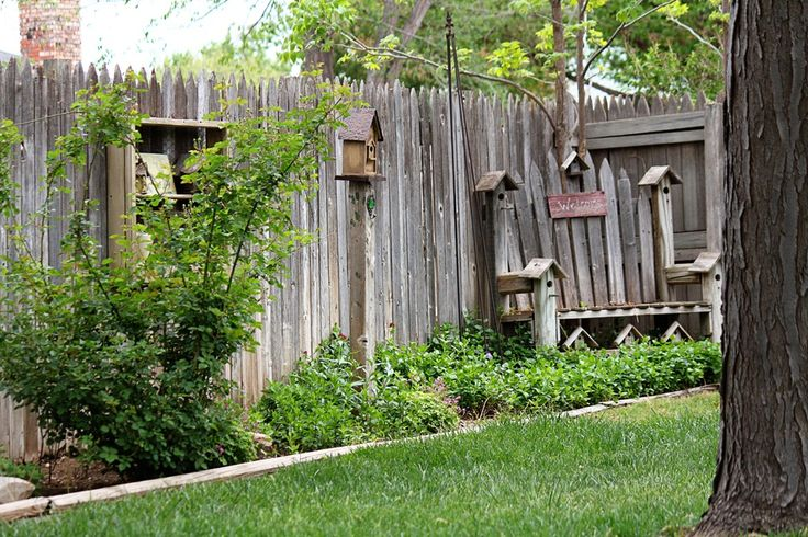 Ideas For Privacy Fencing Landscaping