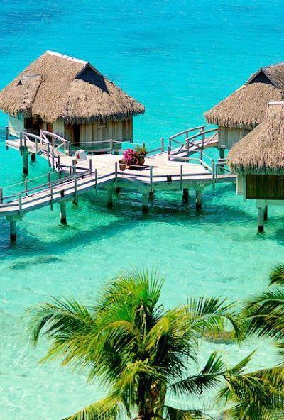1000+ ideas about Palm Island Dubai on Pinterest | Dubai ...