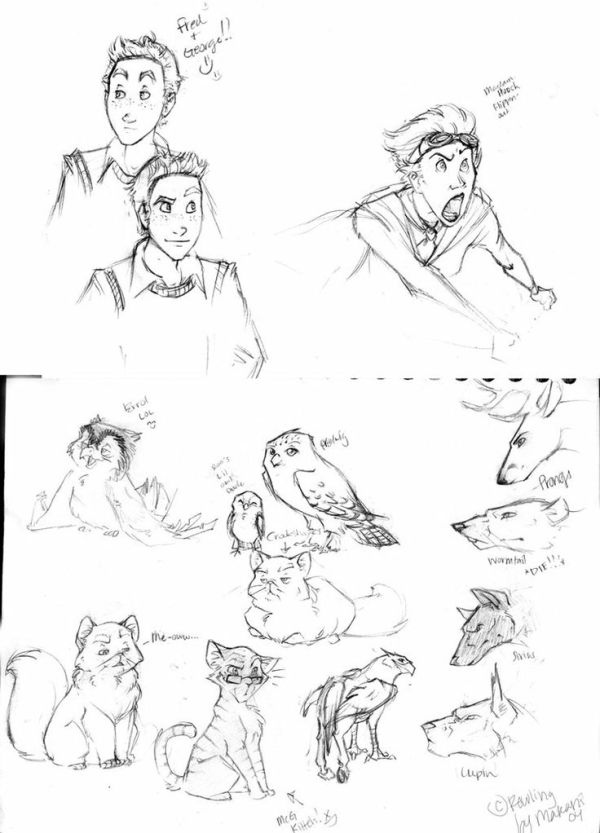 192 best images about HP Harry Potter drawings on