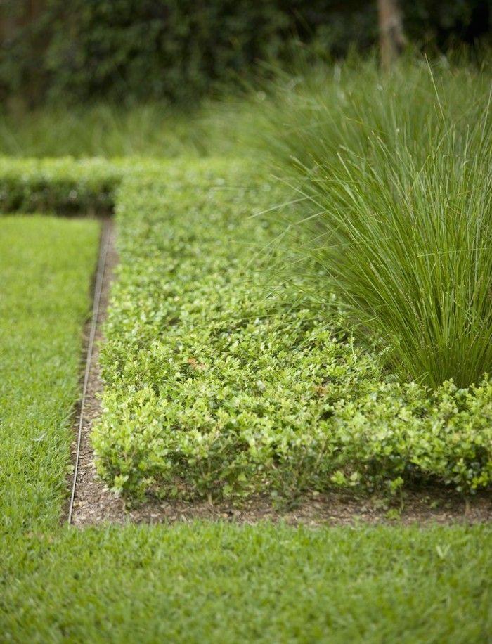 25 Best Ideas About Metal Garden Edging On Pinterest Metal