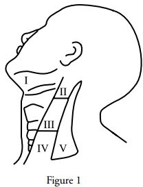 7 best images about Head and Neck Cancer on Pinterest