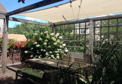 Gazebos Pergolas Sheds For Sale Outdoor Living Today