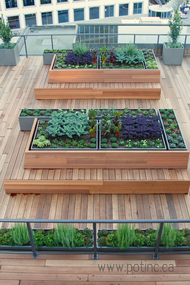 232 Best Images About Urban Garden Roof Top Vegetable Gardens On