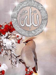 Islamic Quotes And Wallpapers صور دينية جميلة صور متحركة اسلامية منتديات الراشدي