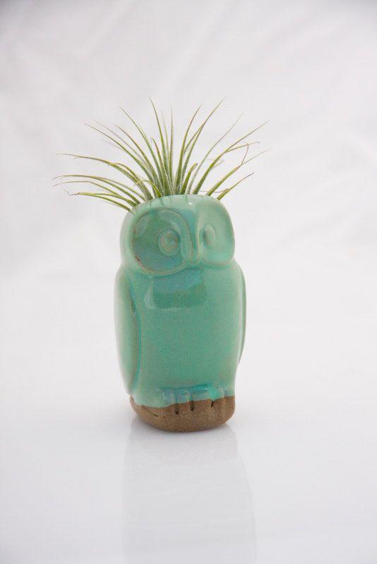 Owl air plant planter ceramic air plant holder in mint