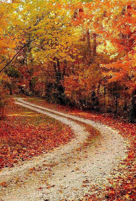 Fall: