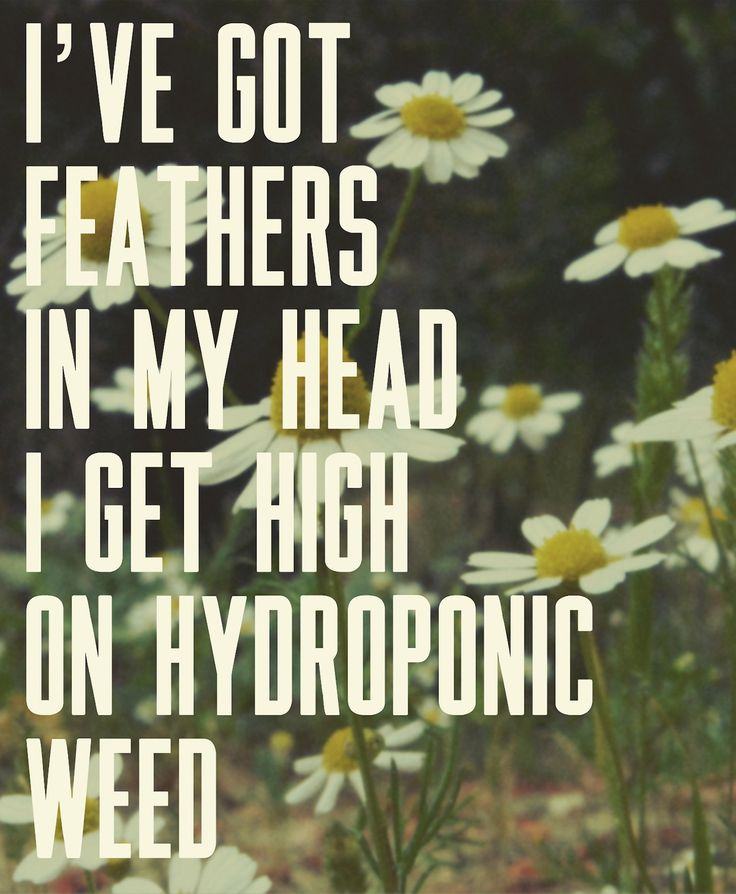 Lana Del Rey – Brooklyn Baby _ Ive got feathers in my hair. I get high on hydroponic weed.