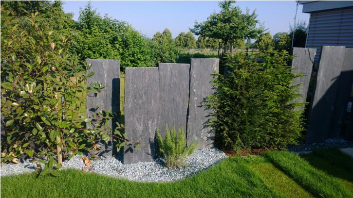 Sichtschutz Pflanzen Garten Sichtschutz Pinterest Garten