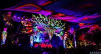 Trance Party EDM Neon Psychedelic Decor