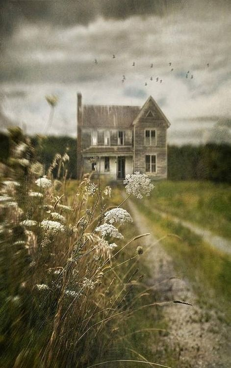 Wallpaper Fall Farmhouse 1000 Images About Beautiful Yet Creepy Pics On Pinterest