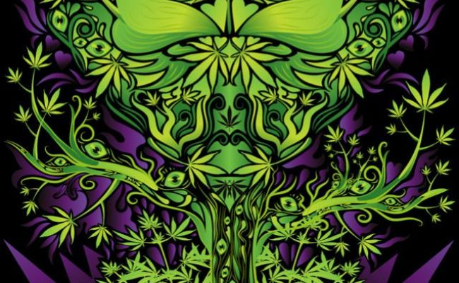 The 25 Best Weed Wallpaper Ideas On Pinterest